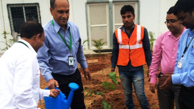Tree plantation by employees
